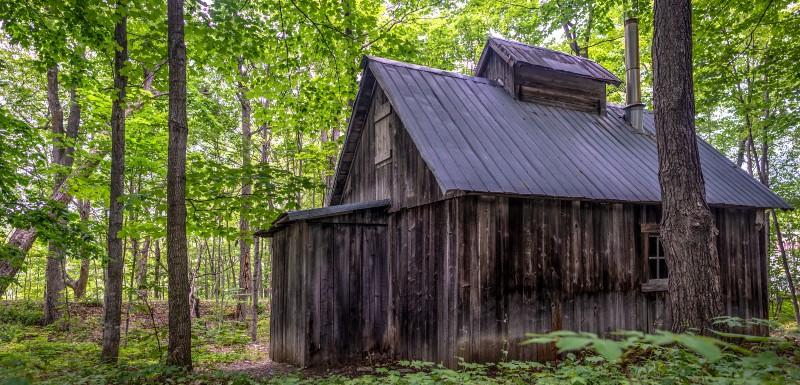 Grande cabane un peu vieille, perdue dans la fôret